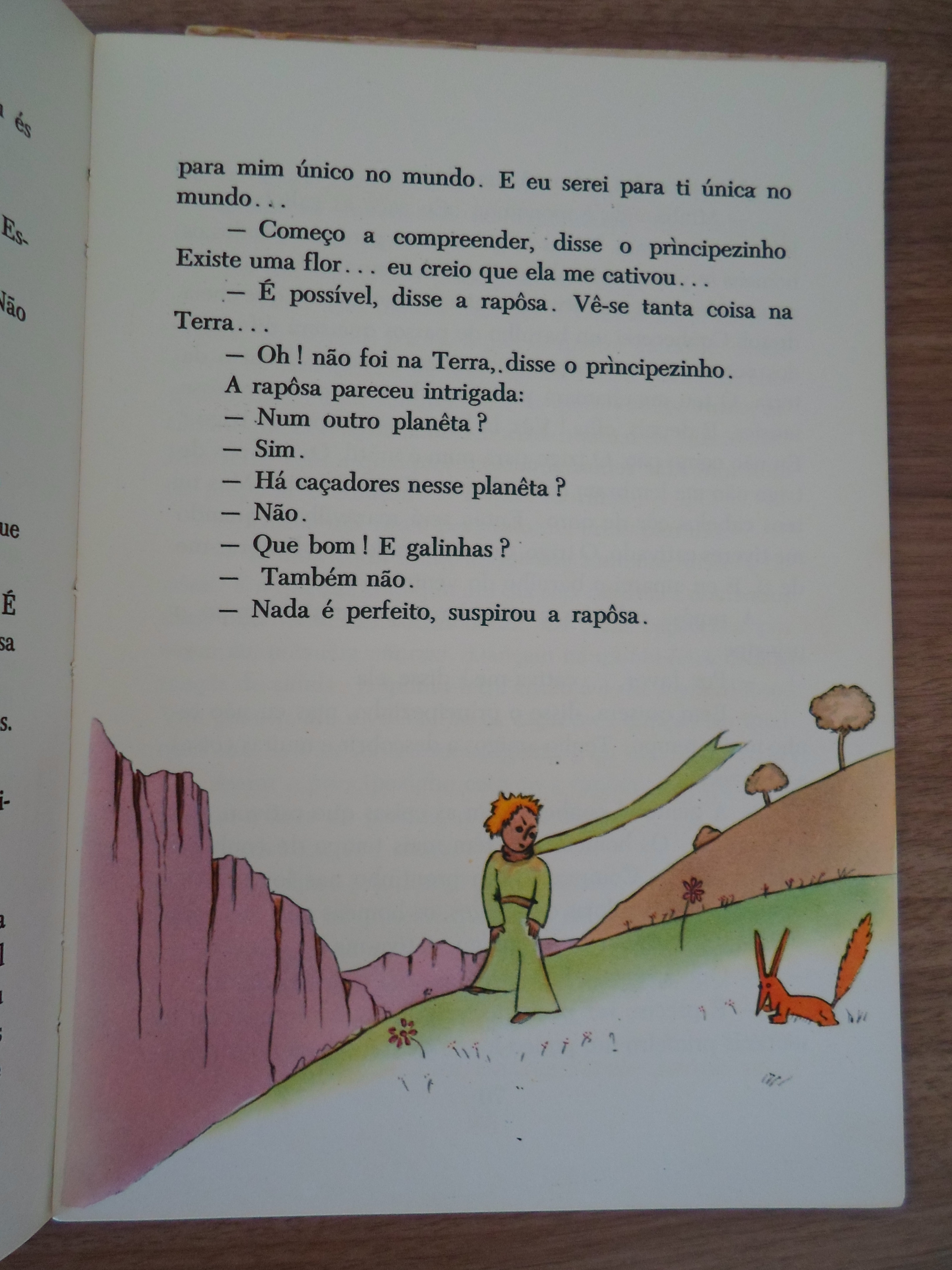 PequenoPrincipe9