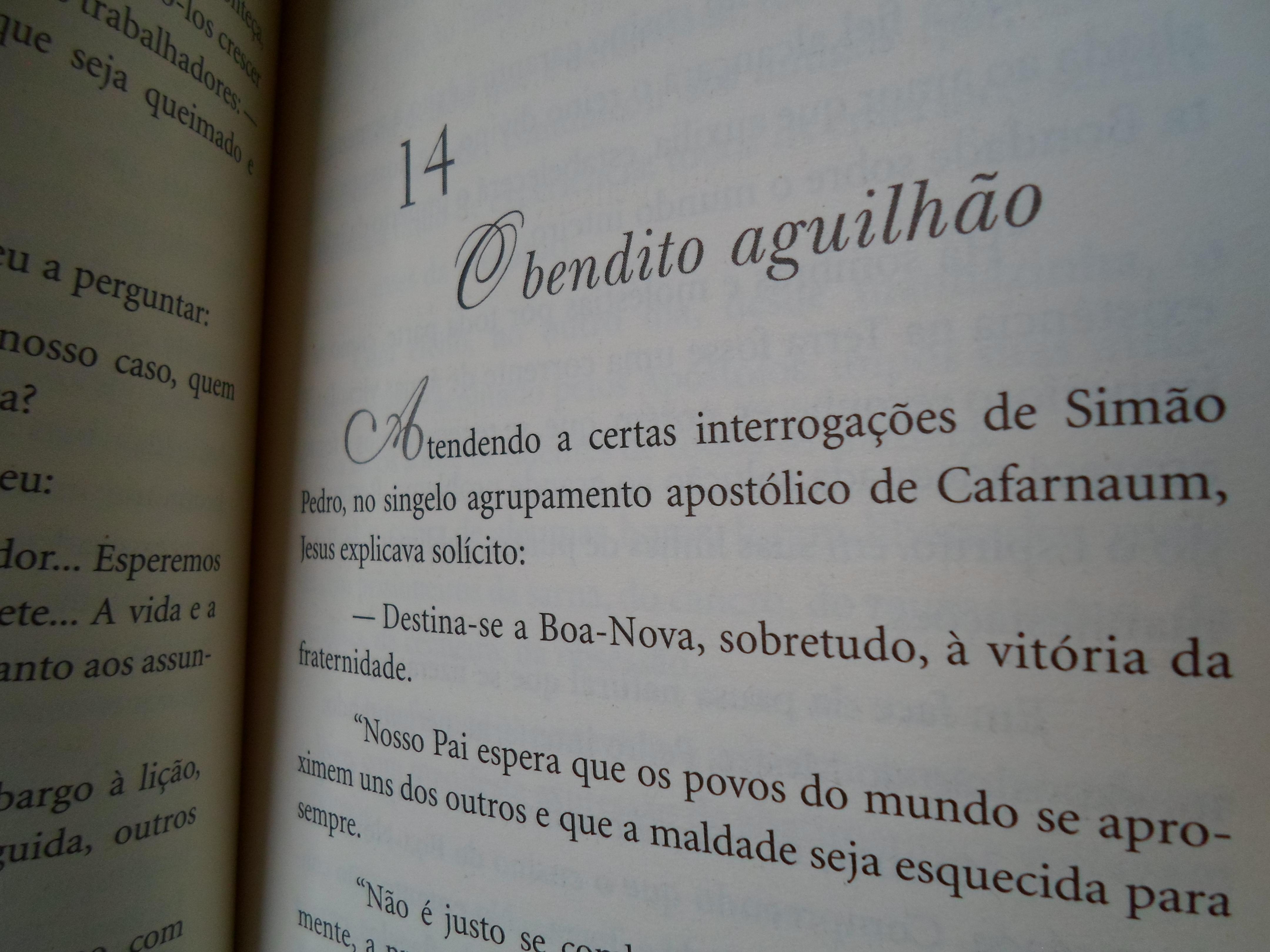 NoRoteiro8